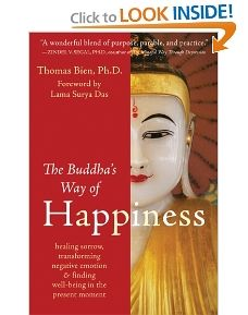 Buddhas guide to happiness book