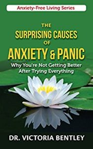 book-the-surprising-causes-of-anxiety-and-panic